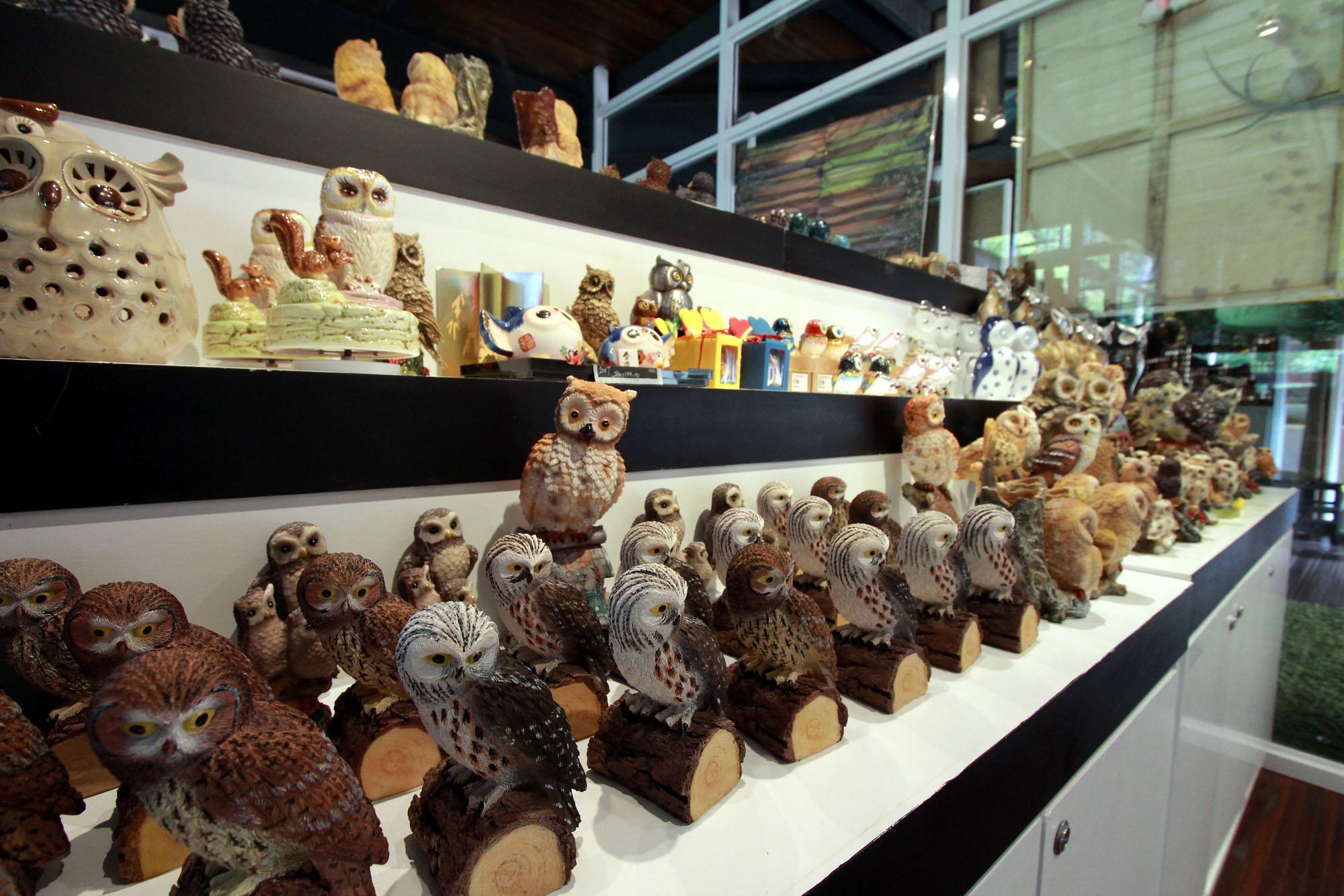 owl-museum-13