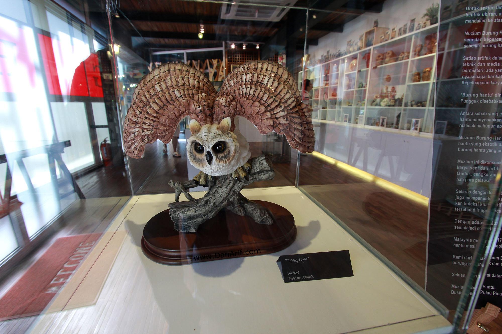 owl-museum-2
