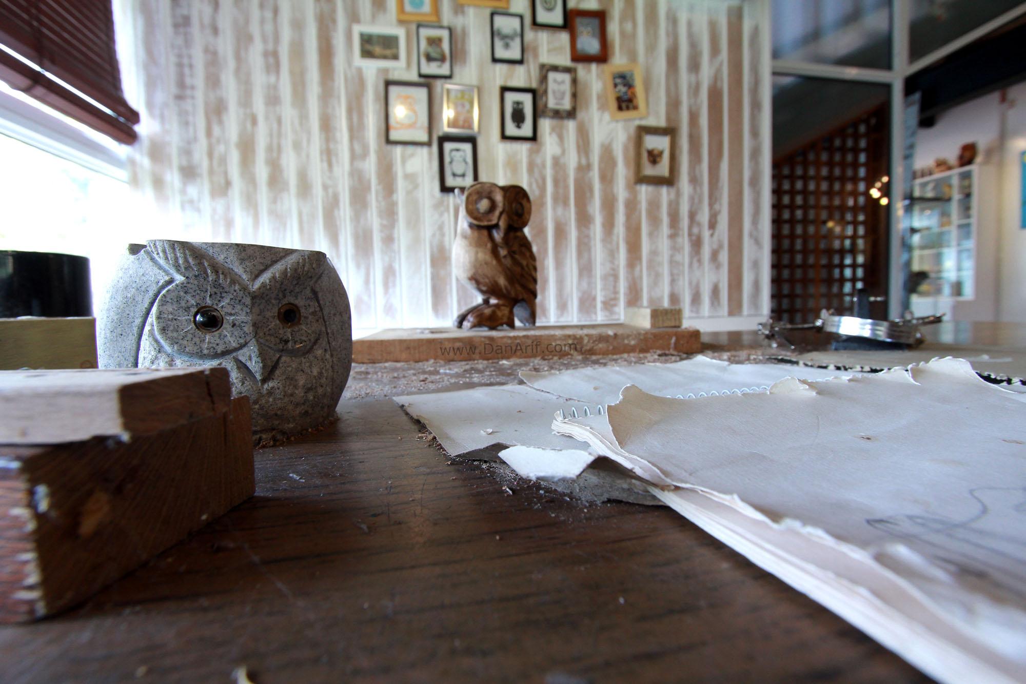 owl-museum-4