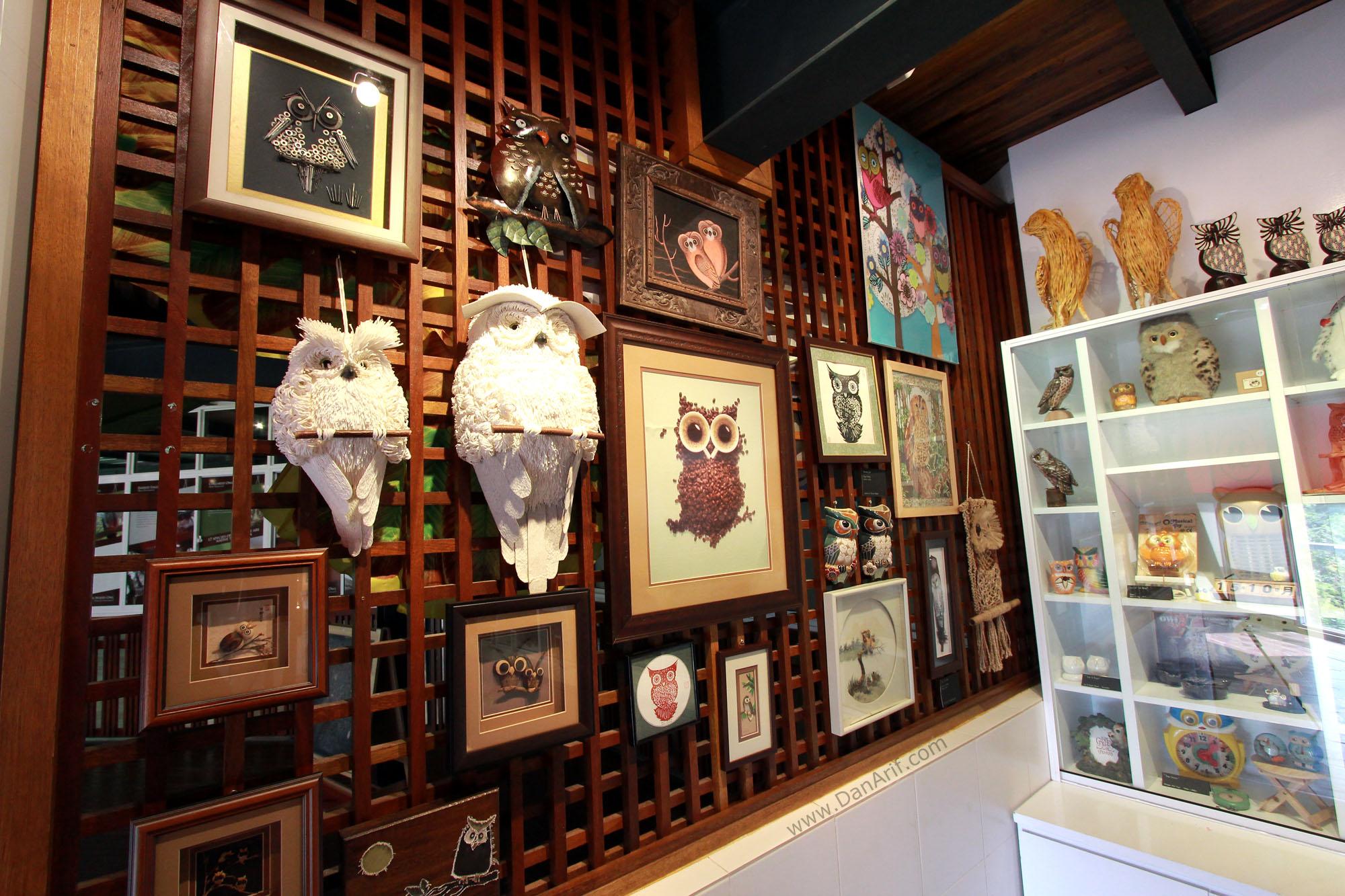 owl-museum-9