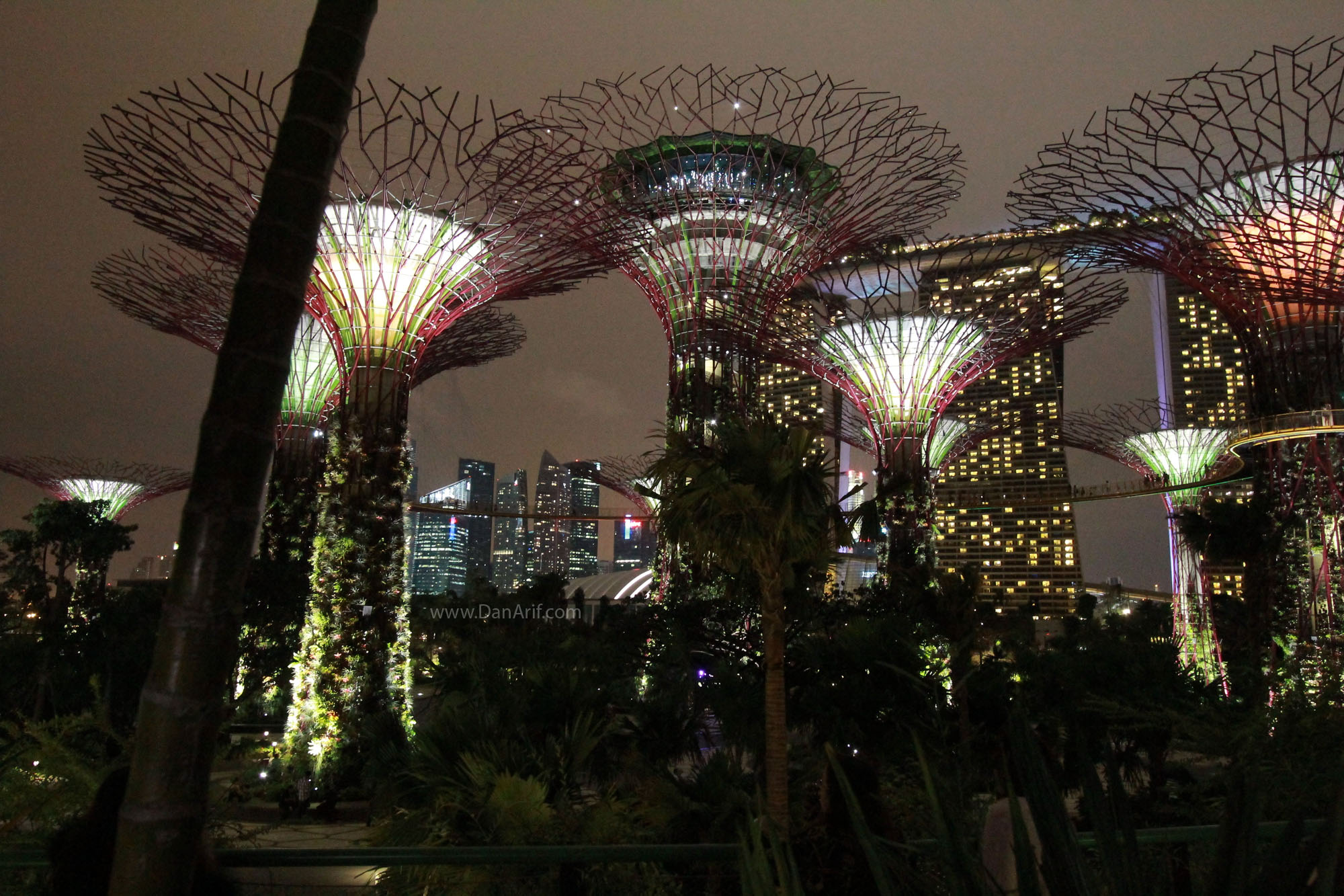 Gardens By The Bay During The Night From Malaysia To The World